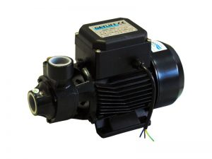 Dayliff DDP 60 water pump 1