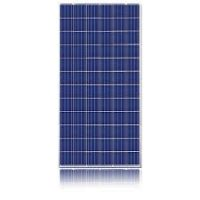 Magnizon Polycrystalline solar panels 120w