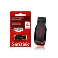Sandisk 4GB flash disk